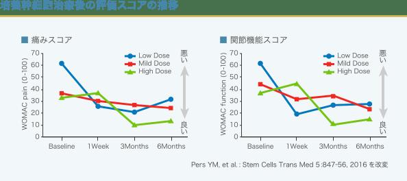 培養幹細胞治療後の評価スコアグラフ