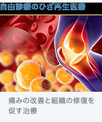 脂肪と血液とひざ関節治療
